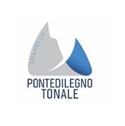Wyjazdy na narty - Pontedilegno Tonale
